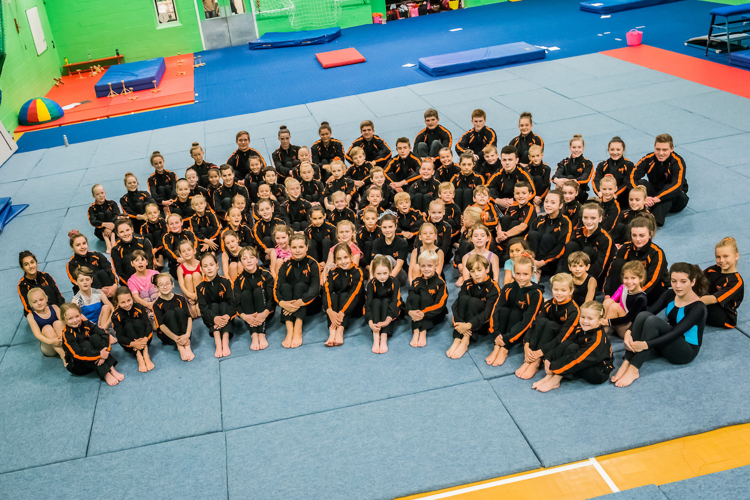 Competition groups - Honiton Gymnastics