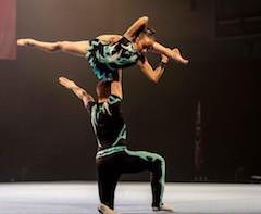 Acrobatic Gymnastics Mixed pair - Honiton